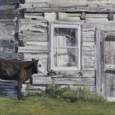 Calf & Homestead