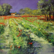 Italien Poppy Field 16 x 20