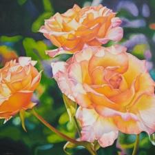 Diane-Huson-Raindrops-on-Roses-24x30