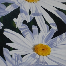 Diane Huson-Three Shastas-12x30