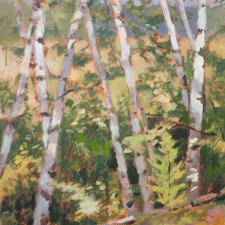 Douglas Edwards-Birch Grove-16x20