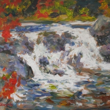 Douglas Edwards-Coopers Falls-12x16