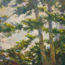 Douglas Edwards-Light Through Trees-36x48