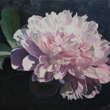 1_Sevier-Pink-Peony-12x16