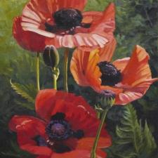 Sevier-Orange-Poppies-16x20