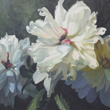 Sevier-Peonies-in-Light-and-Shadow-36x24