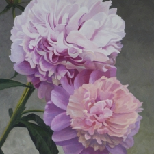 Sevier-Pinks-30x24