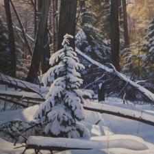 Sevier-Winters-Light-30x24