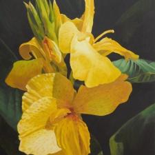 Sevier-Yellow-Calla-Lily-22x28
