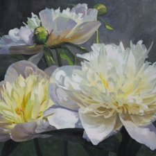 Sevier-Yellow-Centered-Peonies-22x30