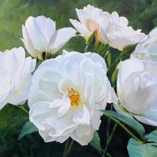 White Roses of Dunkled
