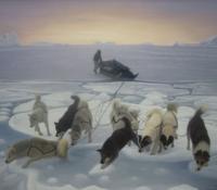 Sled Dogs on Thin Ice