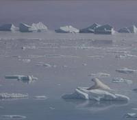 sea ice guardian
