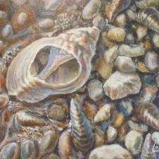 LeClerc-Ashore-Shells on the Rocks-9x12