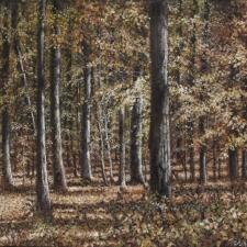 Shumacher-Along-the-Caledon-Trail-16x20