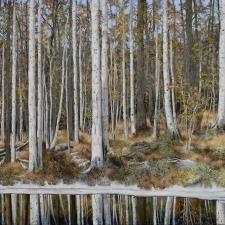 Spring Ice around the Lake