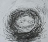 Nest 4 | 16 x 16