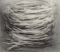 Nest 3 | 16 x 16