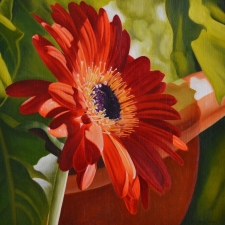 Salutation - Diane Huson