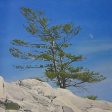 Tim Hough-Pine Tree and Moon-36x36