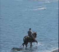 Horse Gathering 3