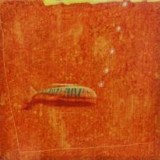 Yury-Darashkevich-Gold-Fish-14x14